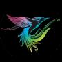 paradiesvogelfest_2019 Kopie Kopie